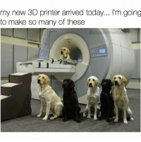 Memes, Genius, and Today: my new 3D printer arrived today... l'm going  to make so many of these  @asleepinthemuseum I might need more printers to make them faster 🐕🐩 (Follow the genius behind this idea 👉@asleepinthemuseum @asleepinthemuseum 👈)