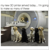 Animals, Memes, and Animal: my new 3D printer arrived today  l'm going  to make so many of these  @asleepinthemuseum @asleepinthemuseum can talk for the animals. Follow the brilliant @asleepinthemuseum to see what the animal kingdom has to say and more!
