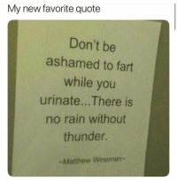 Rain, Quote, and Fart: My new favorite quote  Don't be  ashamed to fart  while you  urinate... There is  no rain without  thunder.
