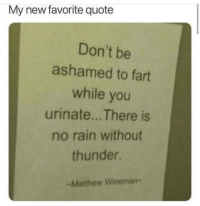 Rain, Quote, and Fart: My new favorite quote  Don't be  ashamed to fart  while you  urinate... There is  no rain without  thunder.  -Matthew Wineman- Let it all out