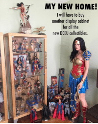 Head, Ikea, and Lol: MY NEW HOME!  MY NEW HOME  I will have to buy  another display cabinet  for all the  new DCEU collectibles.  7 I'M GONNA NEED A BIGGER CASE! * As many of you already know from speaking with me, I moved into my new home this week. Although I'm still unpacking, the first thing I needed to do was set up my Wonder Woman section lol. * But I quickly realized my display case is out of room for all the new @gal_gadot inspired Wonder Woman stuff. So I guess I'll have to head to IKEA and get a case all for her! *** mywonderwoman girlpower women femaleempowerment MulherMaravilha MujerMaravilla galgadot unitetheleague princessdiana dianaprince amazons amazonwarrior manofsteel thedarkknight