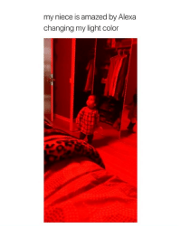 "Wow, Girl Memes, and Light: my niece is amazed by Alexa  changing my light color this is the cutest "" wow "" ever"