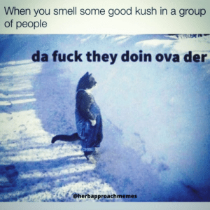 My nosy ass just want to join the sesh..: My nosy ass just want to join the sesh..