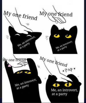 This is so true: My one friend  My one friend  Me, an introvert,  at a party  Me, an introvert,  at a party  My one friend  My one friend  *PAP *  Me, an introvert,  at a party  Me, an introvert,  at a party This is so true