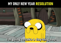 Nappy New Year!: MY ONLY NEW YEAR RESOLUTION  l'm  going to take a daylong nap Nappy New Year!