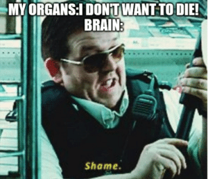 Oh brain, you silly goose.: MY ORGANS:I DONTWANT TO DIE!  BRAIN:  Shame Oh brain, you silly goose.