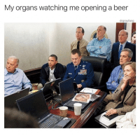 Beer, Internet, and Memes: My organs watching me opening a beer  drgrayfang @drgrayfang is seriously the best thing on the internet.