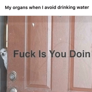 I need water: My organs when I avoid drinking water  Fuck Is You Doin I need water