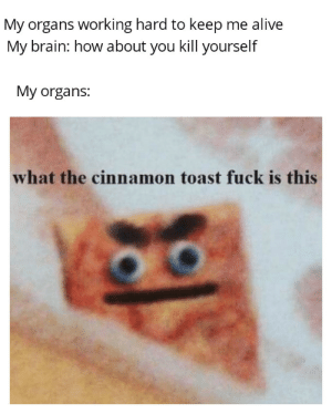 That s not the law of equivalent exchange: My organs working hard to keep me alive  My brain: how about you kill yourself  My organs:  what the cinnamon toast fuck is this That s not the law of equivalent exchange