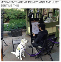Disneyland, Memes, and Parents: MY PARENTS ARE AT DISNEYLAND AND JUST  SENT ME THIS Follow my other account @x__social_butterfly__x @x__social_butterfly__x @x__social_butterfly__x