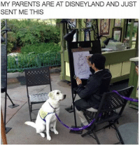 Disneyland, Parents, and Girl Memes: MY PARENTS ARE AT DISNEYLAND AND JUST  SENT ME THIS My parents would do this