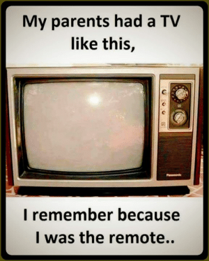 Memes, Parents, and 🤖: My parents had a TV  like this,  I remember because  I was the remote..