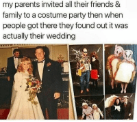 That's cool but can we talk about the couple that dressed as BLT sandwiches 😭: my parents invited all their friends &  family to a costume party then when  people got there they found out it was  actually their wedding That's cool but can we talk about the couple that dressed as BLT sandwiches 😭