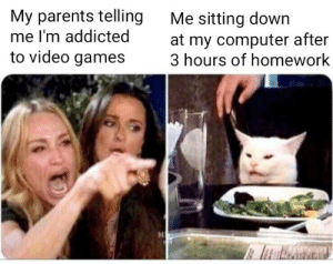 meirl by shmax454 MORE MEMES: My parents telling  me I'm addicted  to video games  Me sitting down  at my computer after  3 hours of homework meirl by shmax454 MORE MEMES