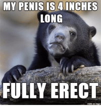 My Is 4 Inches Long Fully Erect Made On Inngur Meme On Me Me
