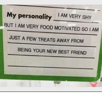 Best Friend, Food, and Best: My personality AM VERY SHY  BUT I AM VERY FOOD MOTIVATED SO I AM  JUST A FEW TREATS AWAY FROM  BEING YOUR NEW BEST FRIEND