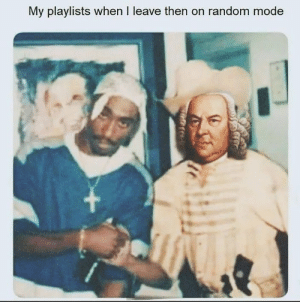 Dank Memes, Random, and Mode: My playlists when I leave then on random mode