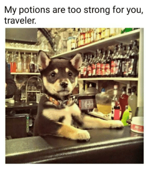 Strong, You, and For: My potions are too strong for you,  traveler.  22 Strong drink