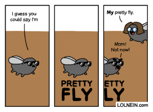 Aww mom, thanks: My pretty fly  I guess you  could say l'm  Mom!  Not now!  ETTY  PRETTY  FLY LY  LOLNEIN.com Aww mom, thanks