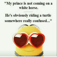 "Confused, Horses, and Memes: ""My prince is not coming on a  white horse.  positive result  He's obviously riding a turtle  somewhere really confused..."" Tag friends 😂😂😂 Check out all of my prior posts⤵🔝 Positiveresult positive positivequotes positivity life motivation motivational love lovequotes relationship lover hug heart quotes positivequote positivevibes kiss king soulmate girl boy friendship dream adore inspire inspiration couplegoals partner"