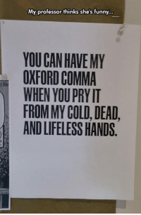 My professor thinks she's funny..  YOU GAN HAVE MY  OXFORD COMMA  WHENYOUPRY IT  FROM MY COLD, DEAD  AND LIFELESS HANDS <p>Grammar Humor.</p>