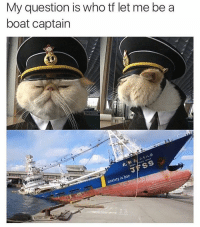 I trusted the wrong cat @anxiety.is.bae: My question is who tf let me be a  boat captain  FSS  J bae  anxiety is I trusted the wrong cat @anxiety.is.bae