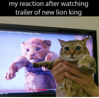 Memes, Lion, and Lion King: my reaction after watching  trailer of new lion king  Teaser Trailer #1 (2019)  Movieclips Trail  :54/1:42 hakuna matata via /r/memes https://ift.tt/2KwiyVB