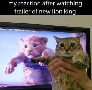 Dank, Memes, and Target: my reaction after watching  trailer of new lion king  Teaser Trailer #1 (2019)  Movieclips Trail  :54/1:42 hakuna matata by zazracnedieta MORE MEMES