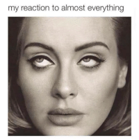 Funny, Everything, and  Almost: my reaction to almost everything