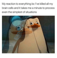 Funny, Brain, and Girl Memes: My reaction to everything bc I've killed all my  brain cells and it takes me a minute to process  even the simplest of situations Um...what?