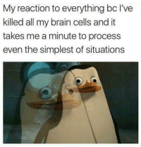 Brain, MeIRL, and All: My reaction to everything bc I've  killed all my brain cells and it  takes me a minute to process  even the simplest of situations meirl
