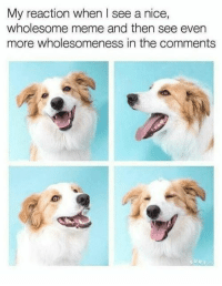 "Meme, Wholesome, and Nice: My reaction when I see a nice,  wholesome meme and then see even  more wholesomeness in the comments <p>It does happen :D via /r/wholesomememes <a href=""https://ift.tt/2KRxscs"">https://ift.tt/2KRxscs</a></p>"