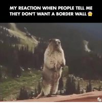 Watch, Conservative, and They: MY REACTION WHEN PEOPLE TELL ME  THEY DON'T WANT A BORDER WALL Watch with sounds ON!📢