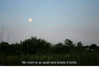 Quiet, Hurts, and Room: My room is so quiet and empty it hurts.