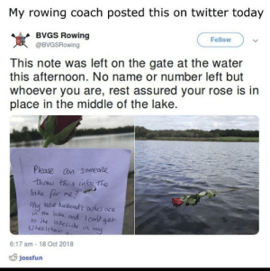 Memes, Tumblr, and Twitter: My rowing coach posted this on twitter today  BVGS Rowing  Follow  岌  This note was left on the gate at the water  this afternoon. No name or number left but  whoever you are, rest assured your rose is in  place in the middle of the lake.  @BVGSRowing  Please cn someare  lake for me?  my ate husboad't astes are  ia ta lake and I cont ge  ro he lakeside ta  wheelchai  6:17 am -18 Oct 2018  jossfun positive-memes:  This is rather moving in my opinion