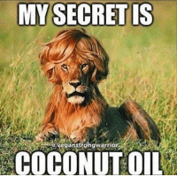 Memes, Coconut Oil, and 🤖: MY SECRET IS  aveganstrongwarrio  COCONUT OIL