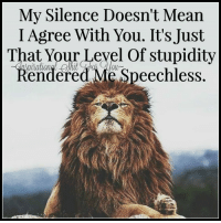 Inspirational Shit For You ^_^ ^_^: My Silence Doesn't Mean  I Agree With You. It's Just  That Your Level Of Stupidity  Rendered Me Speechless Inspirational Shit For You ^_^ ^_^