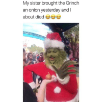 The Grinch, Love, and Memes: My sister brought the Grinch  an onion yesterday and l  about died Love this so much 😂 Credit: @spokesmayne