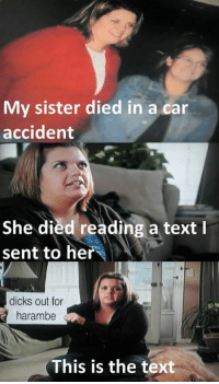dicks out: My sister died in a car  accident  I  She died reading a text  sent to her  dicks out for  harambe  This is the text