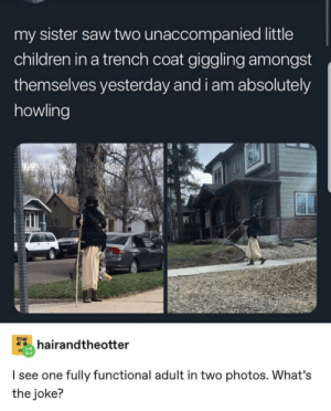 10/10 wholesome via /r/wholesomememes https://ift.tt/2lxPwN4: my sister saw two unaccompanied little  children in a trench coat giggling amongst  themselves yesterday and i am absolutely  howling  FIGHT  hairandtheotter  I see one fully functional adult in two photos. What's  the joke? 10/10 wholesome via /r/wholesomememes https://ift.tt/2lxPwN4