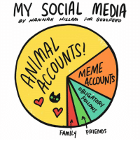 Memes, 🤖, and Family Friendly: MY SOCIAL FOR MEDIA  ACCOUNTS  FAMILY FRIENDS I may have a problem