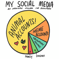 Memes, 🤖, and Social-Media-Accounts: MY SOCIAL MEDIA  ACCOUNTS  FAMILY FRIENDS 100% accurate. (for @comics)