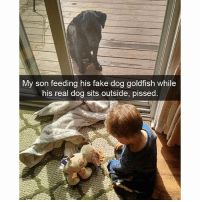 there is a profoundly deep metaphor here somewhere: My son feeding his fake dog goldfish while  his real dog sits outside, pissed. there is a profoundly deep metaphor here somewhere