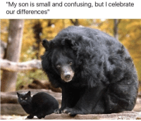 """Amp, Son, and Celebrate: """"My son is small and confusing, but I celebrate  our differences"""" small  confusing"""