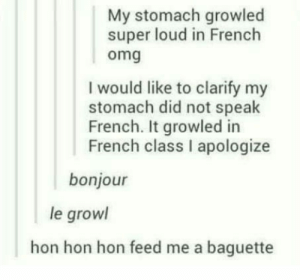 Omg, French, and Super: My stomach growled  super loud in French  omg  I would like to clarify my  stomach did not speak  French. It growled in  French class I apologize  bonjour  le growl  hon hon hon feed me a baguette Growled in french