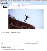 Funny, Gif, and News: MY SUBREDDITS w  FRONT ALL RANDOM  I ASK REDDIT  FUNNY TODAYILEARNED  PICS  GIFS  WORLD NEWS GAMING VIDE  reddit  GIFS comments  other discussions (1)  His gif post didn't get attention  (i giphy.com  submitted 22 hours ago by inertstitials  1 comment share  save hide delete nsfw  all 1 comments  sorted by: best  disable inbox replies  content policy formatting help  save  C-J BanditMaverick 1 point 2 hours ago  Neither did yours  permalink embed save  report give gold replied The 1 comment on my gif of a guy jumping off building because his gif got no comments