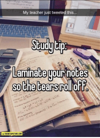Memes, 🤖, and Html: My teacher just tweeted this...  Study tip  Laminate  wour notes  Sothe tears(ToldoFFS  MATHEMETAPICTURE.COM Study Tip http://www.damnlol.com/study-tip-101971.html