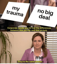 Omg, Tumblr, and Blog: my  trauma  no big  deal  Corporate needs you to find the differences  between this picture and this picture.  me  They're the same picture. mymentals:  omg