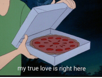 Love, True, and True Love: my true love is right here