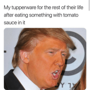 Dank, Life, and Memes: My tupperware for the rest of their life  after eating something with tomato  sauce in it Accurate by kawalchugh MORE MEMES